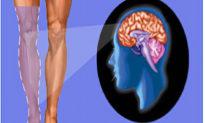 """Giải mã hiện tượng """"đau chi ma"""" – thấy đau ở phần cơ thể không còn tồn tại"""