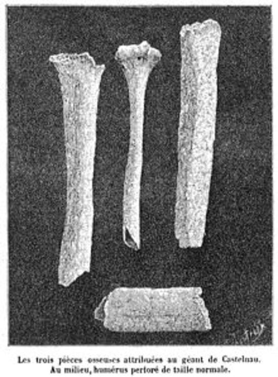 """Theo Georges Vacher de Lapouge, ba mảnh xương được đặt tên là """"Người khổng lồ của Castelnau"""""""