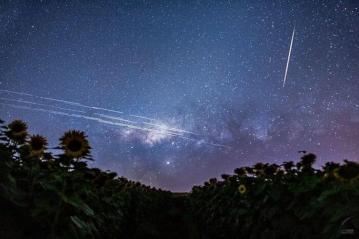 Internet vệ tinh Starlink của SpaceX có kế hoạch phủ sóng toàn cầu vào tháng 9