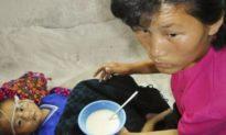 FAO: Triều Tiên có thể đối mặt với nạn đói trong nửa cuối năm nay