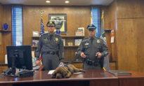 Chú chó cảnh sát ngủ gật trong lễ tuyên thệ nhậm chức của mình
