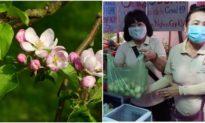 Khoảnh khắc 'cây táo nở hoa' trong những ngày bùng dịch Covid 'toàn chuyện xấu xa'