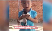Thấy mèo con bị bỏ rơi, em bé ôm về xin bà nuôi vì lý do rơi nước mắt 'nó mồ côi giống con'