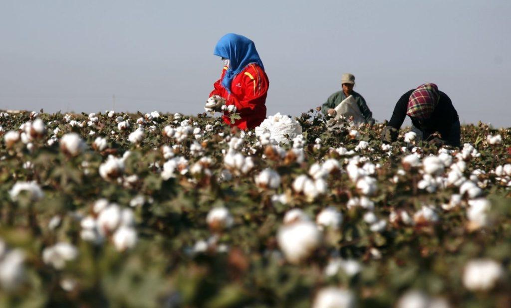 Mỹ trừng phạt công ty Trung Quốc do hỗ trợ bức hại nhân quyền ở Tân Cương