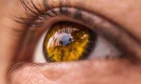 Tại sao chúng ta phải chớp mắt?