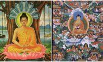 Đức Phật Thích Ca Mâu Ni (Phần 12): Về nước thuyết Pháp, quảng độ Vương tộc [Radio]