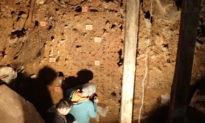 DNA trầm tích tiết lộ lịch sử300.000 năm của người cổ đại và hiện đại ở Siberia