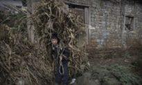 'Phép màu' của ĐCS Trung Quốc: Dân đói cùng cực vẫn được coi là đã 'thoát nghèo'