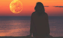 Khi tâm hồn càng trống rỗng, con người càng thích giao lưu và giải trí 'nghèo nàn'