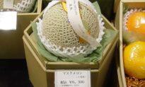 Hoa quả Nhật 'đắt kinh khủng', đơn giản vì chất lượng 'trên cả tuyệt vời'
