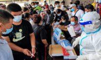 TQ: Vùng biên giới Vân Nam xây dựng 500 km hàng rào thép gai để ngăn chặn dịch bệnh?