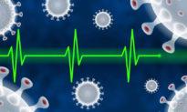 Công cụ mới iAge - đồng hồ lão hóa hệ miễn dịch - dự báo nguy cơ nhiễm bệnh