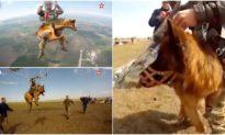 Chó quân sự Nga được huấn luyện... nhảy dù