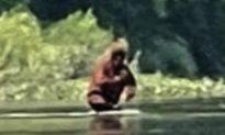 Du khách bất ngờ quay được cảnh 'Bigfoot' ẵm con ở khu vực Bắc Mỹ?