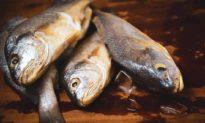 5 loại cá mà bạn không nên ăn