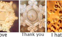 Ý niệm của con người có thể làm thay đổi hình dạng phân tử nước