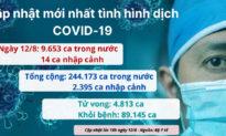 Số ca nhiễm COVID tại Việt Nam
