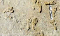 Dấu chân người lâu đời nhất ở Bắc Mỹ được tìm thấy ở New Mexico
