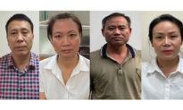 Nâng khống hàng chục tỉ đồng giá cây xanh ở Hà Nội: Bắt tạm giam thêm 4 bị can