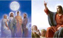 Bài học lịch sử: Tai vạ của Thánh nhân - Hãy đừng để nỗi ân hận trở nên muộn màng