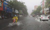 Đà Nẵng mở thêm các dịch vụ ở 'vùng xanh', điều động xe buýt làm nơi tránh bão cho chốt kiểm dịch