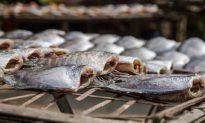 5 loại cá ăn càng ít càng tốt