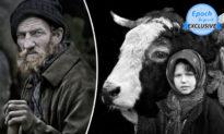 15 năm để chụp ảnh chân dung về những người chăn cừu Transylvanian và bầy đàn của họ