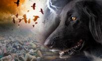 Chuyện lạ: động vật biết nói, còn báo trước được cả tương lai!?
