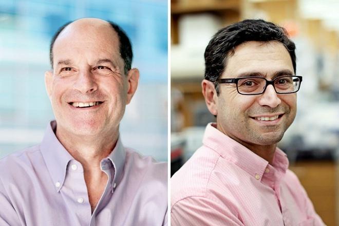 Giải Nobel Y Sinh 2021 dành cho khám phá về nhiệt độ và xúc giác