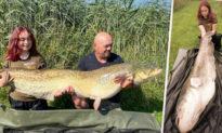 Bé gái 15 tuổi người Anh câu được cá trê khổng lồ, có trọng lượng nặng hơn cả cô bé
