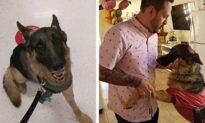 Cựu quân nhân Mỹ bị trầm cảm vì cụt chân đã hồi phục sau khi nhận nuôi chú chó 3 chân