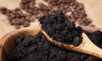 Đừng vứt bã cà phê đi! 7 công dụng tuyệt vời giúp khử mùi và hút ẩm hiệu quả