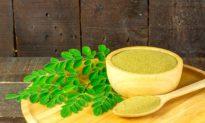 5 lợi ích sức khỏe hàng đầu của cây chùm ngây