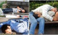 """Ngôi làng có thứ """"kỳ lạ"""" khiến cư dân đang đi bộ trên đường bỗng lăn ra ngủ li bì"""